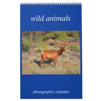 wild animal photo wall calendars