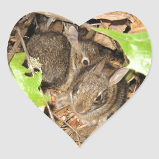 Wild Baby Bunnies Heart Sticker