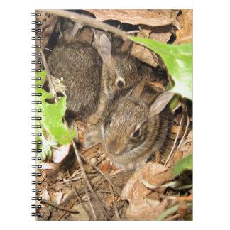 Wild Baby Bunnies Notebook