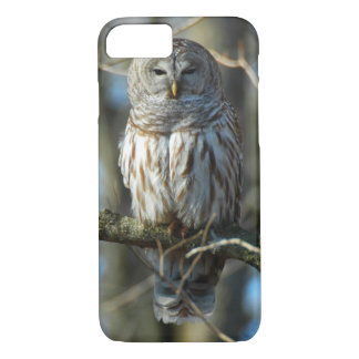 Wild Barred Owl Photograph iPhone 7 Case