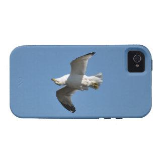 Wild Bird for Bird-lovers iPhone 4 Covers