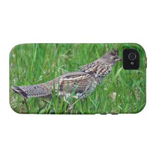 Wild Bird for Bird-lovers Case-Mate iPhone 4 Case