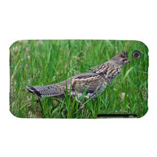 Wild Bird for Bird-lovers iPhone 3 Cover