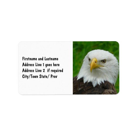 Wild Bird Photography - American Bald Eagle Label