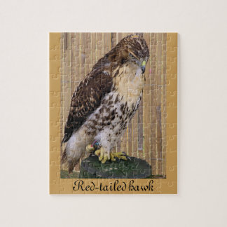 Wild Birds: Red-Tailed Hawk Jigsaw Puzzles