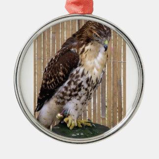 Wild Birds: Red-Tailed Hawk Metal Ornament