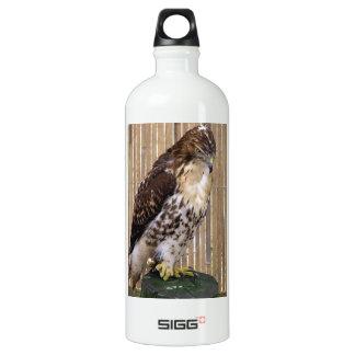 Wild Birds: Red-Tailed Hawk SIGG Traveller 1.0L Water Bottle