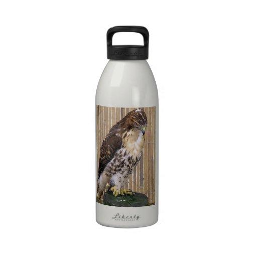 Wild Birds: Red-Tailed Hawk Water Bottles
