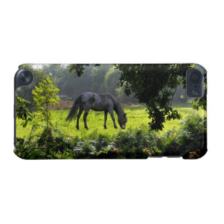 Wild Black New Forest Pony - Grazing Horse U.K. iPod Touch (5th Generation) Case
