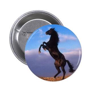 Wild Black Stallion Rearing Horse Buttons
