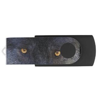Wild Black Wolf Eyes Wildlife Art USB Flash Drive
