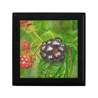 Wild Blackberries ripening in Summer Gift Box
