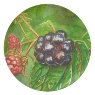 Wild Blackberries ripening in Summer Plate