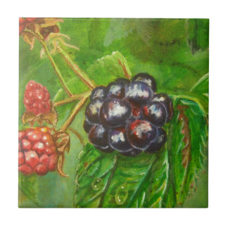 Wild Blackberries ripening in Summer Tile