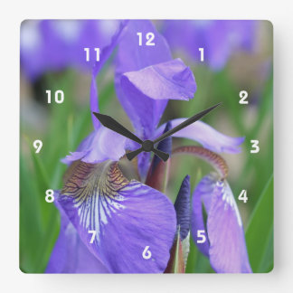 Wild Blue Flag Iris Flower Wallclock