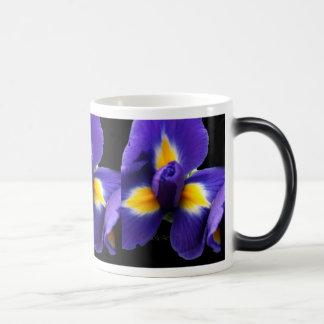 Wild Blue Iris Morphing Mug