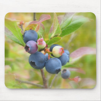 Wild Blueberries Mouse Pad