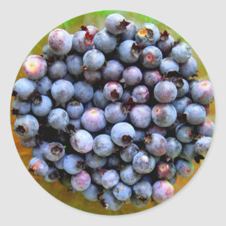 Wild Blueberries Photography Round Sticker