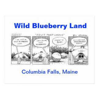 Wild Blueberry Land Postcard