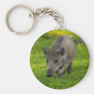 wild boar search for love key ring