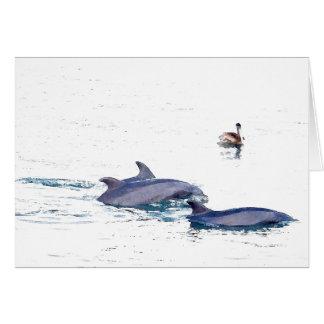Wild Bottlenose Dolphins Card