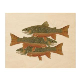Wild Brook Trout Wood Prints