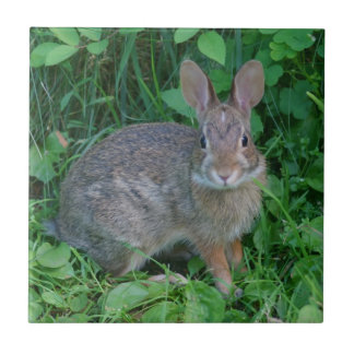 Wild Brown Rabbit Animal Ceramic Tile
