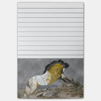 Wild Buckskin Appaloosa Horse Post-it Notes