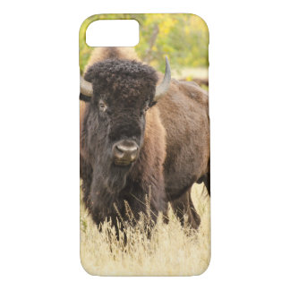 Wild Buffalo in a Field iPhone 8/7 Case