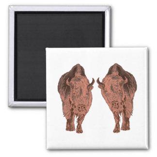 Wild Buffalo Magnet