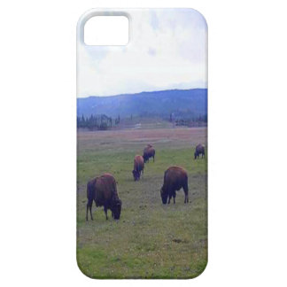 Wild Buffaloes Barely There iPhone 5 Case