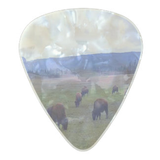 Wild Buffaloes Pearl Celluloid Guitar Pick