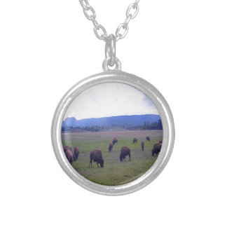 Wild Buffaloes Silver Plated Necklace