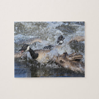 Wild (Canada) Goose Chase: The Spat at Piper Spit Jigsaw Puzzle