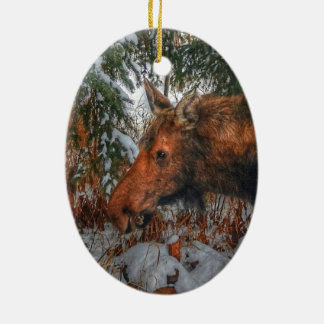 Wild Canadian Moose Grazing in Winter Forest Ceramic Ornament
