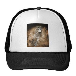 Wild Cap