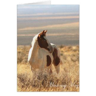 Wild Card~ Blue-eyed Little Mustang Card