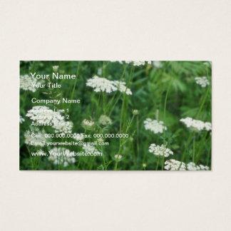 Wild Carrot (Daucus Carota) flowers Business Card