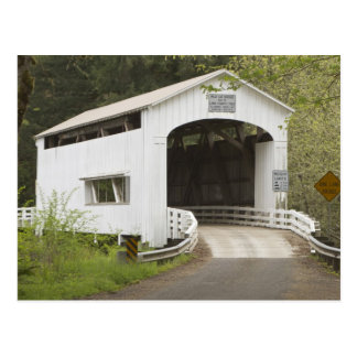 Wild Cat covered bridge, Lane County, Oregon Postcard