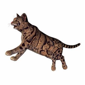 wild cat standing photo sculpture