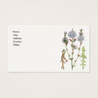 Wild Chicory Business Card