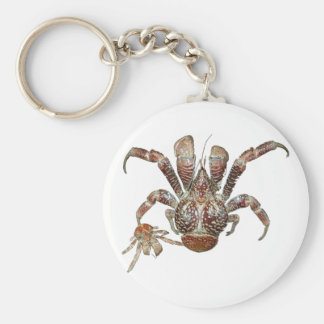 Wild Coconut Crab from Carribean Key Ring