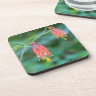 Wild Columbine Red Wildflowers Plastic Coasters