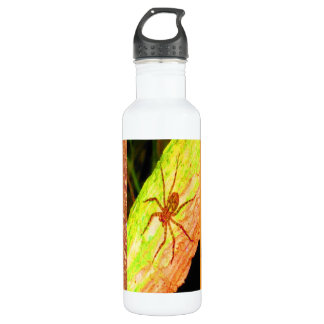 Wild Costarica - Spiders, Cockroaches and Insects 710 Ml Water Bottle