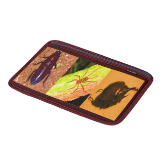Wild Costarica - Spiders, Cockroaches and Insects MacBook Air Sleeves