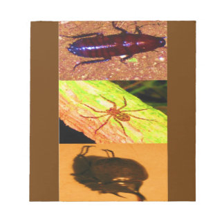 Wild Costarica - Spiders, Cockroaches and Insects Notepad