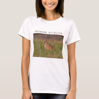 Wild cottontail rabbit T-Shirt