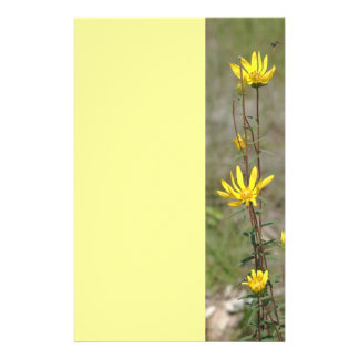Wild Daisies Personalised Stationery