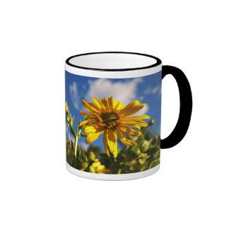 Wild Daisy Flower Photo Ringer Mug