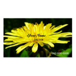 wild dandelion flowers. pack of standard business cards